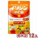 (賞味期限2021.2月末!本州送料無料) 味覚糖 イソジンのど飴  はちみつ金柑袋 (6×2)12入 *