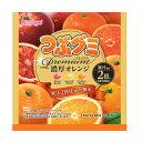 (賞味期限2022.3月末)春日井 つぶグミ Premium(プレミアム) 濃厚オレンジ 10入*