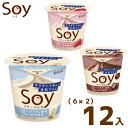 (2つ選んで、本州一部冷凍送料無料)クラシエ SOY(6×2)12入 (ソイ 豆乳 アイス アイスクリーム) (冷凍)