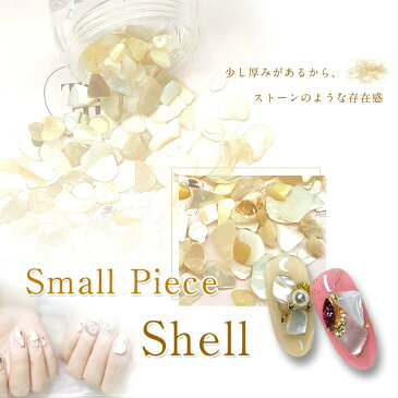 【メール便対応】貝のかけら スモールピースシェル