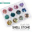 アースカラー シェルストーン 角型ケース入り12色セット 天然貝【メール便対応】貝の欠片 お得なセット