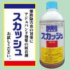 【送料込】機能性展着剤 スカッシュ 500mlソルビタン脂肪酸エステル70%配合