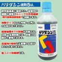 殺菌剤 バリダシン 液剤(500ml)軟腐病・黒斑病・芽枯病...