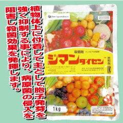 ★広範囲の野菜に登録有★果樹・野菜など幅広く使用されています。殺菌剤 ジマンダイセン水和...