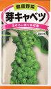 昨年TVで紹介され話題になった芽キャベツ!1株で多収穫(約100球位)野菜種 種子芽キャベツ(2...