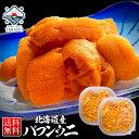 うに ウニ 塩水 北海道産 バフンウニ 【送料無料】200g