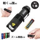 LED懐中電灯ASAHI 市販電池対応 単3乾電池 1本 人...