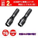 LEDハンディライト ASAHI 2本セット 市販電池対応単...