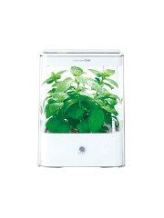 ユーイング『Green Farm Cube(グリーンファームキューブ)』UH-CB01G(W)…