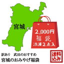 【訳あり】みやぎのお勧め福袋(冷凍) 2点入 (海産品) 2K
