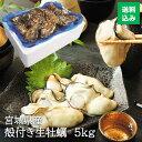 【飲食店でも使用】和がき 宮城県産 殻付き 生牡蠣 5kg