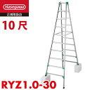 長谷川工業 ハセガワ 脚立専用 RYZ1.0-30 10尺 天板高さ:2.82〜3.13m