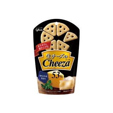 ■生チーズのチーザ カマンベールチーズ 40g