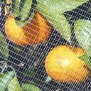 果樹すっぽり防鳥ネット 6×6M