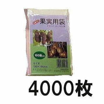 果実掛袋 果実袋 (小) 120×196mm デラウェア (小)・キューイ用 100枚入×40袋 徳用4000枚 針金付き