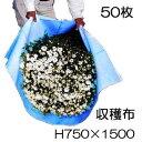 収穫袋 収穫布 ベンリークロス H750×1500 ブルー 50枚セット ネギマキネット