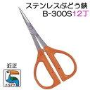 (入荷待ち)(12丁特価 送料無料) 近正 チカマサ ステンレス ぶどう鋏 B-300S