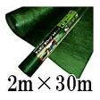 デュポンXavan ザバーン防草シート 2m×30m 厚さ0.64mmグリーン XA-240G2.0超強力【smtb-ms】