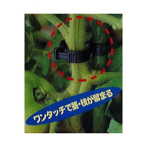 誘引資材 しちゅうキャッチ 16 (24個入) 黒or緑 色選択 支柱径16mm用 シーム S16B-24 S16G-24 z