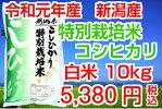 29年産特栽コシヒカリ10kg
