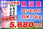 29年産魚沼産コシヒカリ10kg