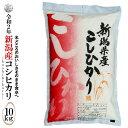 ◆産地直送◆ 令和2年産 新潟産コシヒカリ 白米10kg(5kg×2袋)お米マイ