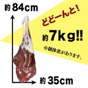 【送料無料/北海道稚内産】エゾ鹿肉 骨付き足(7kg前後)【無添加】【エゾシカ肉/蝦夷鹿肉/えぞしか肉/ジビエ】 2