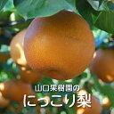 残りわずか!【送料無料】にっこり梨(5kg箱)(山口果樹園)