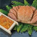 【蟹とウニの豪華コラボ!】ボイル毛ガニ500g×1尾生うに折100g