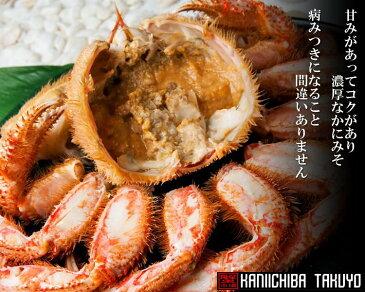 北海道産・活毛蟹500g前後(中)×2尾【楽ギフ_のし】【活カニ】【お買い得】