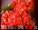 北海道から海鮮グルメお取り寄せ!!セール!道東名物活花咲かにオス2尾1.2kg前後【楽ギフ_のし】
