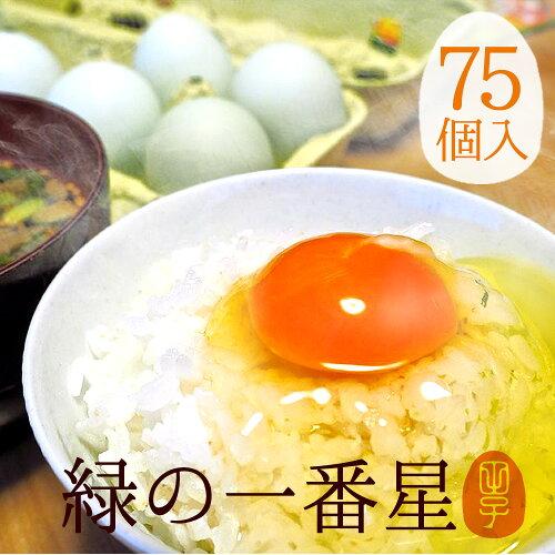 卵 緑の一番星 送料無料 75個入 飲んでも美味!甘く濃厚 生臭さ無 アローカナが進化!大黄卵鶏が産む...