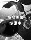 【当店全品エントリーでポイント5倍中】(12/11 23:59迄)【取り寄せ品】クロ・デ・ランブレイ...