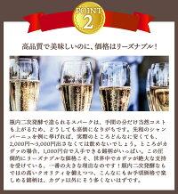 【送料無料】ワインセットカヴァ6本セット辛口シャンパン製法瓶内二次発酵スパークリングワインカヴァだけ第24弾