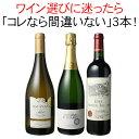 【送料無料】ワインセット 迷ったらこれ 御祝 誕生日 ギフト プレゼント 赤ワイン 白ワイン スパークリング ワイン 3本 セット イタリア チリ スペイン 第54弾