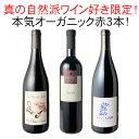 【送料無料】ワインセット 真の自然派ワイン好き限定 本気 オーガニック 赤ワイン 3本 セット ガチオーガニック 第4弾