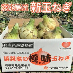 農家直送!淡路島の新玉ねぎ「極味」5kg箱入り 送料無料(沖縄、北海道を除く)
