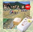 農林水産大臣賞を受賞した完全無農薬自然あいがも米。体にやさしい味です。たにぐちがこだわって栽培した究極の健康食品です。【無農薬】新米♪23年度たにぐちのあいがも米 5キロ(真空パック)兵庫県浜坂産
