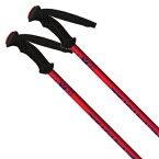 【エントリーで最大24倍!11/25限定】KERMA ケルマ ジュニア キッズ スキー ポール・ストック 2021 VECTOR TEAM/ DDI6010 子供用 20-21 NEWモデル