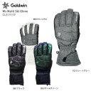 スキーグローブ GOLDWIN ゴールドウィン レディース 女性用 2021 Ws Multi Ski Glove GL81915P 20-21 NEWモ...