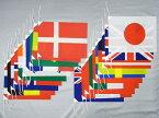 日本製 テトロン 万国旗 (ポリエステル) 個別ひも付き 20ヶ国 小旗