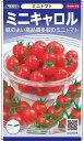 ミニトマト 種 『ミニキャロル』 5ml サカタのタネ