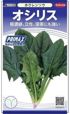ホウレンソウ 種 『オシリス』 小袋(採苗本数500本)(PRIMAX処理) サカタのタネ