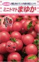 ミニトマト種『まゆか』100粒松永種苗