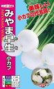 小カブ 種 『みやま早生』 20ml ナント種苗