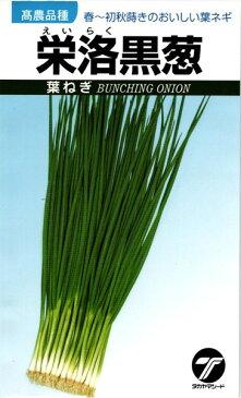 葉ネギ 種 『栄洛黒葱』 1Lタカヤマシード