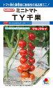 ミニトマト 種 『TY千果』 1000粒 タキイ種苗