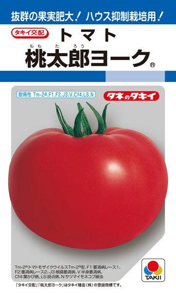種子, 野菜の種子  20(DF)