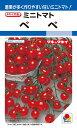 ミニトマト 種 『ペペ』 1000粒 タキイ種苗