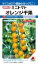 ミニトマト 種 『オレンジ千果』 1000粒 タキイ種苗